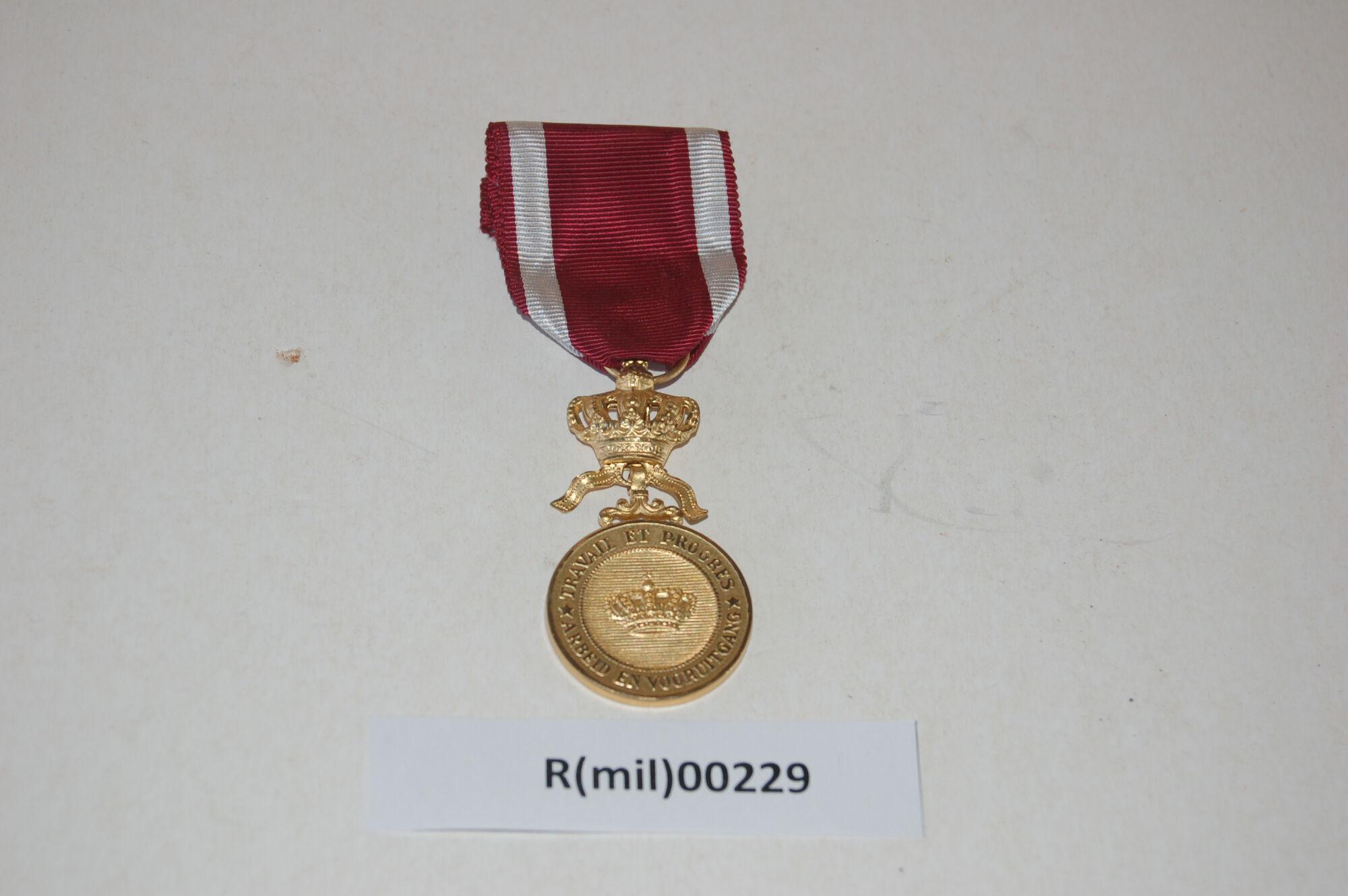 Ronse MUST: medaille R(mil)00229.JPG