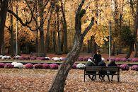 Herfst in het stadspark 2018