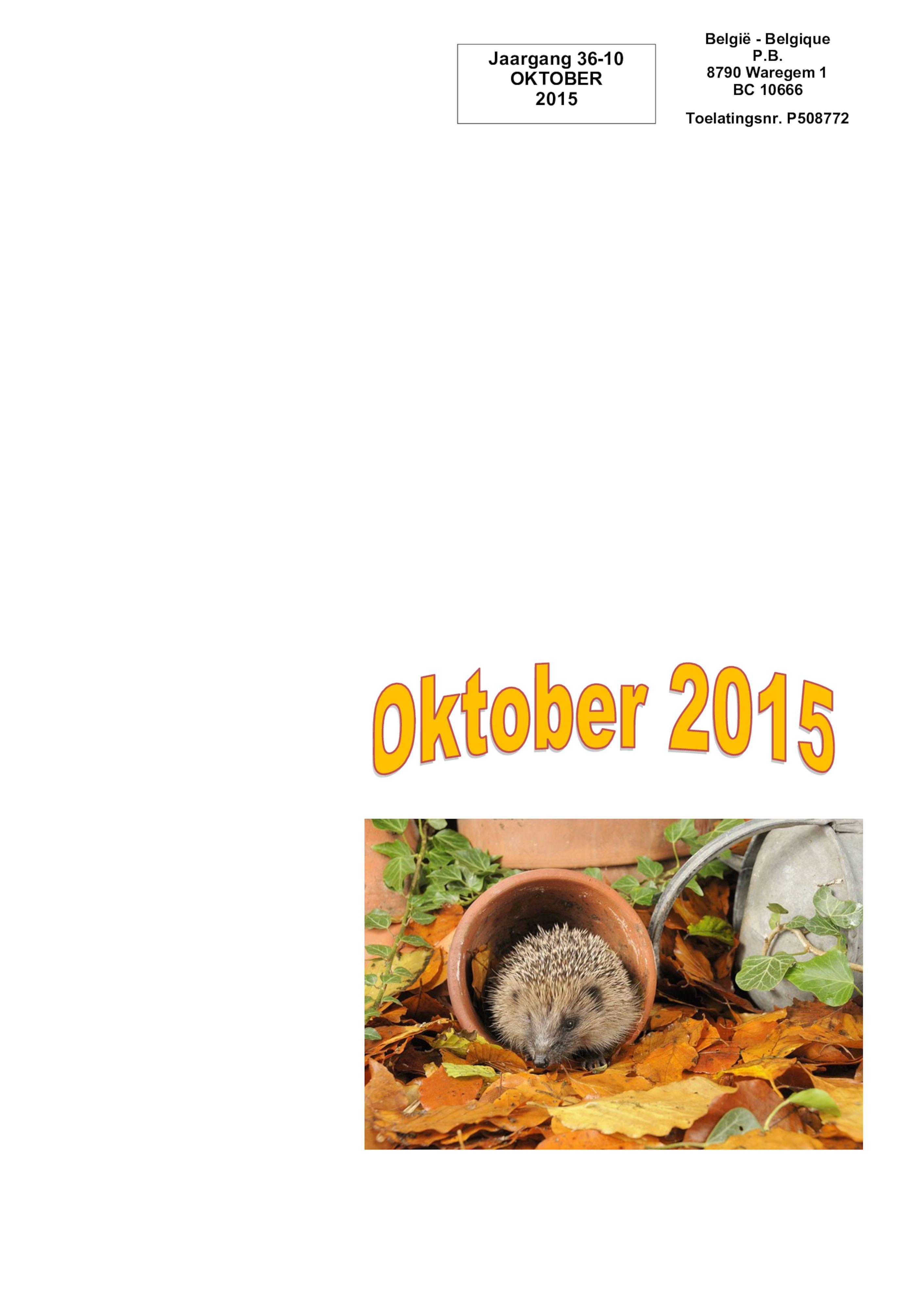 De Belle oktober 2015.pdf