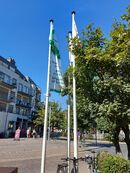 Mayors for peace vlag