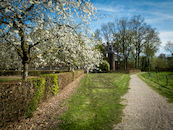 Aertrycke lentebeelden