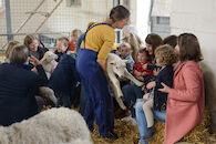 Grote Lammetjesdag
