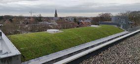 Groendak provinciehuis Boeverbos