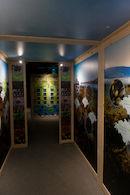 Opening tentoonstelling 'Wier Algemeen: over het leven van wier en het wier in je leven'