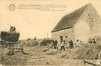 Digitale Collectie Vlaserfgoed Provincie West-Vlaanderen - Le Lys. Le battage du lin. Le lin sèché sur champ, est amené aux bords de la Lys en batty, pour détacher la graine. Il est ensuite lié en bottes d'une façon spéciale à ce produit.