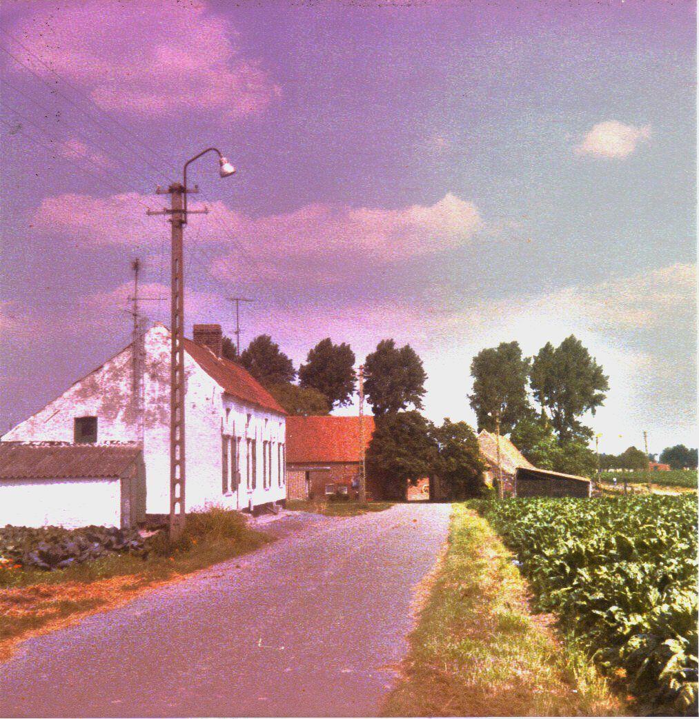 Lettenhofstraat