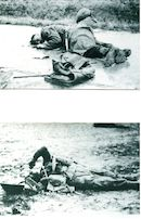 Gesneuvelden 1944