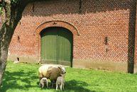 Moen  boerderij